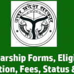 [Status] Up Scholarship Online Form 2021-22|scholarship.up.nic.in 2021